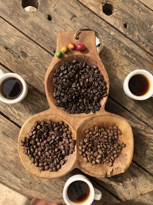 incentive-reise-panama-panamacity-kaffeefarm-eventagentur-globaldesire